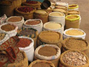 semillas-frutales-semillas-vivero-arboles-frutales-viveros-montero
